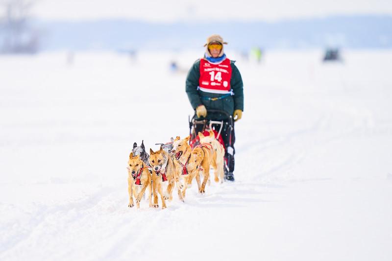 397    RobertEvansImagery.com IG @RobertEvansImagery   Klondike Dog Sled Race 2-9-2020.JPG