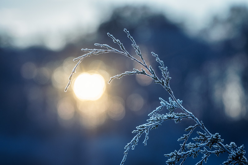 Solstice sunrise at the Pond