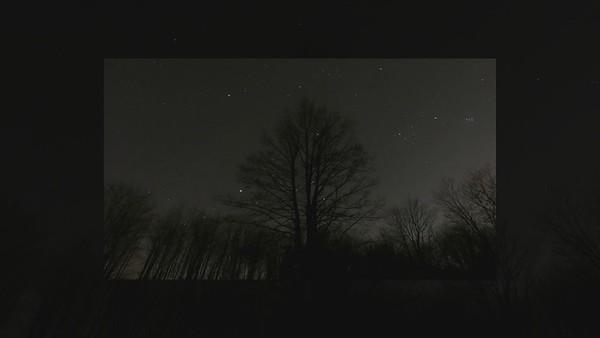 Stars and Milky Way 2021