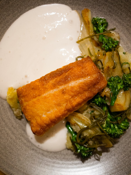OLO fish and veloute.jpg