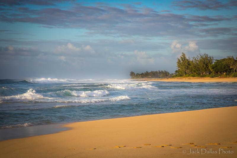 Oahu DF0A2522.jpg