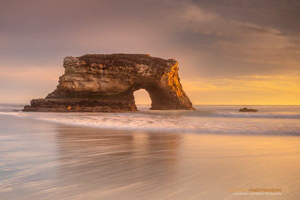 California: Natural Bridges State Beach