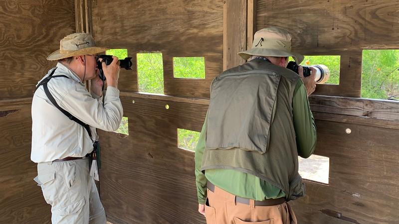 Laguna Vista Nature Trail Observation Blind #3