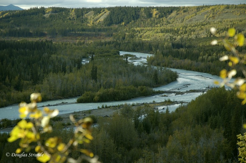 0509021413_CopperRiverOverlook.jpg