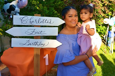 Charlotte's 1st Birthday Party