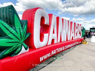 National Cannabis Festival '19