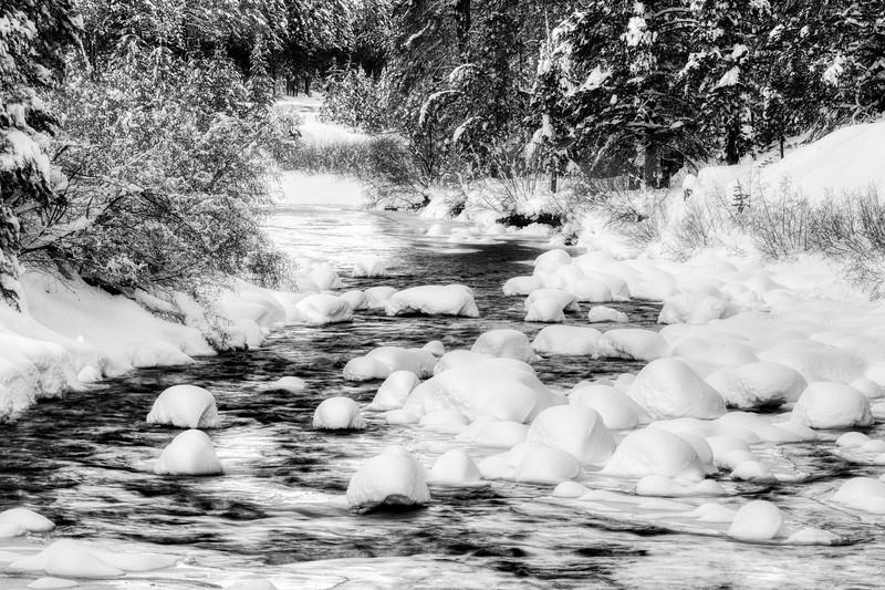 Chilly S.jpg