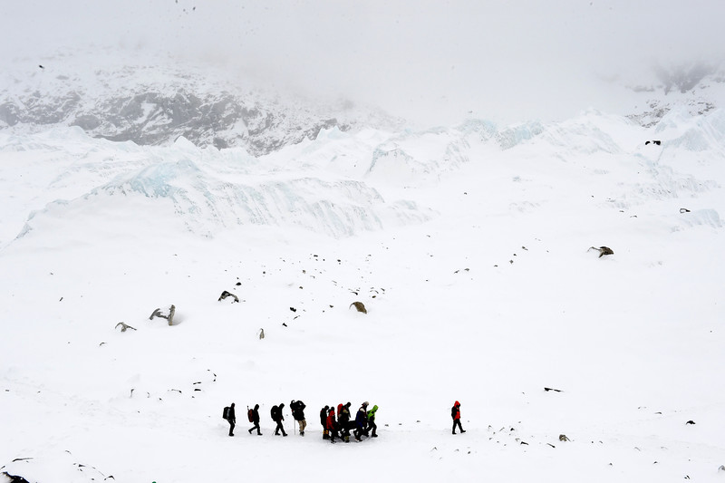 . Rescuers carry a sherpa injured by an avalanche that flattened parts of Everest Base Camp.   Rescuers in Nepal are searching frantically for survivors of a huge quake on April 25, that killed nearly 2,000, digging through rubble in the devastated capital Kathmandu and airlifting victims of an avalanche at Everest base camp.   ROBERTO SCHMIDT/AFP/Getty Images