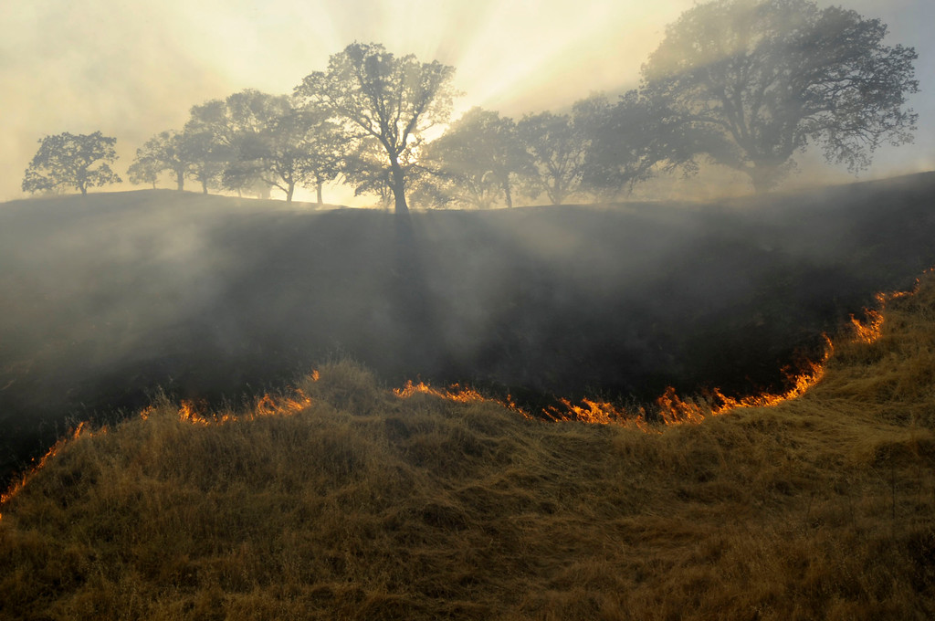 . A vegetation fire moves up a canyon near Foothill Drive where a blue sky is filled with smoke in Antioch, Calif., on Wednesday, June 24, 2015. (Susan Tripp Pollard/Bay Area News Group)