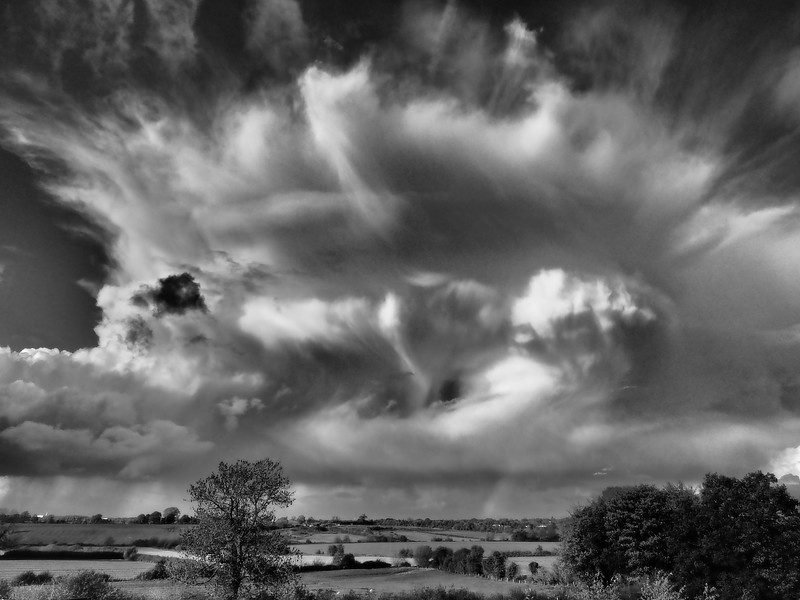 Autumn Convection b&w