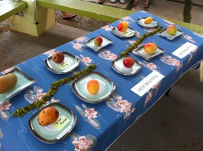 2011-05-29 Agat Mango Festival