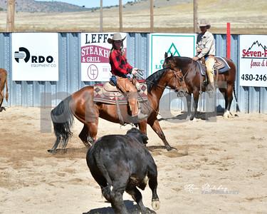 NACHA Ranch Horse Snaffle 10.9.21