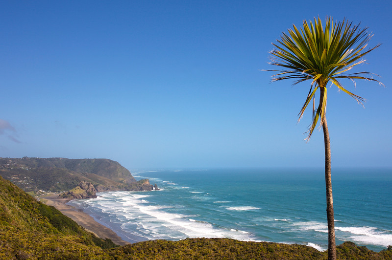 View to Piha on Auckland's west coast