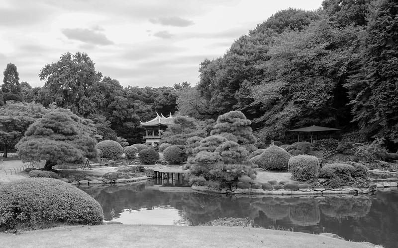 japan_fall_2016-1.jpg