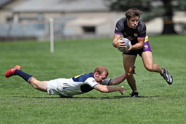 Colorado Stags Rugby