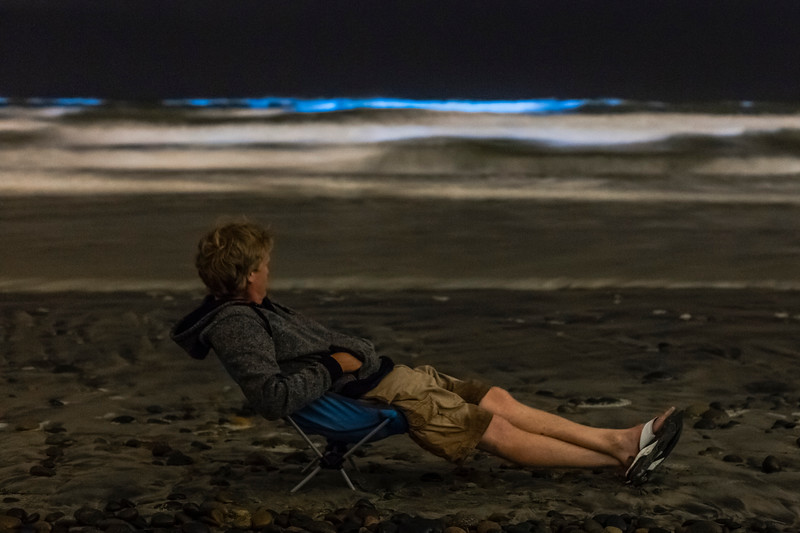 Chillin' At South Ponto Beach and Watching the Bioluminescent Red Tide In Southern California