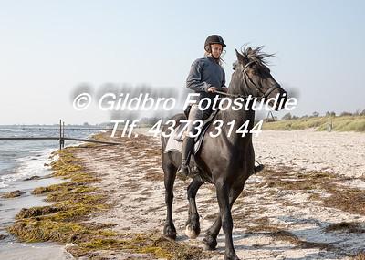 Ishøj Sports Rideklub - Strandtur Oktober 2014