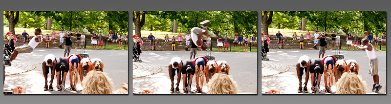 *NYC_Central_Park_Act.jpg