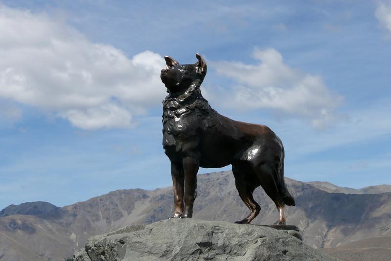 Monument to the Collie Dog. Lake Tekapo