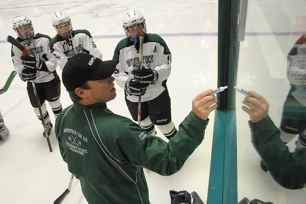 WUHS Girls Hockey, 2014 Preseason