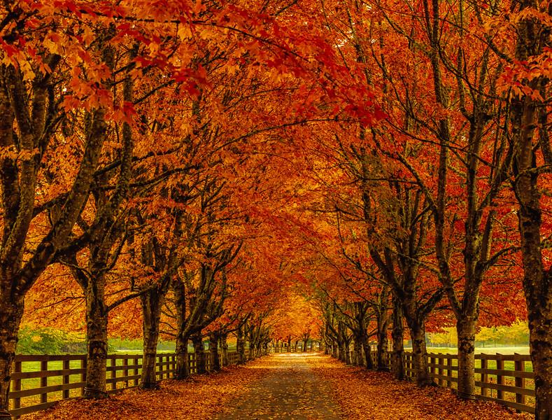 Rockwood Farm.jpg
