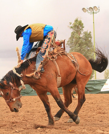 2014 Pima County Fair Rodeo