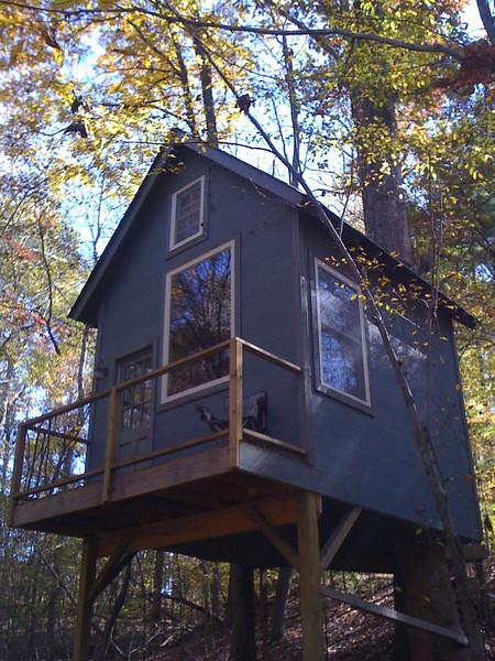 Tree House/Deer Stand