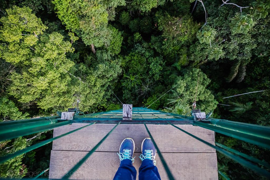Posada Amazonas - Canopy Tower - Lina Stock