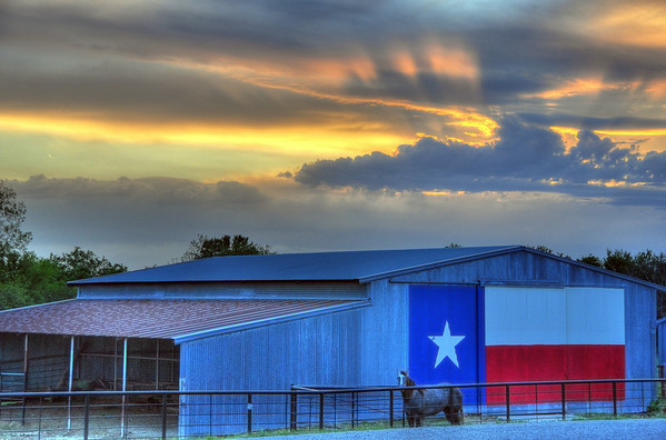 Curated Texas Images