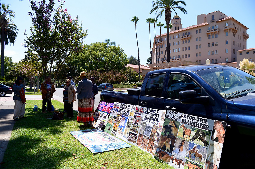 . Wildlife activists gather outside the Ninth Circuit Court of Appeals in Pasadena before attending a hearing on Bureau of Land Management\'s round-up of wild horses Thursday, August 29, 2013.  (Photo by Sarah Reingewirtz/Pasadena Star-News)