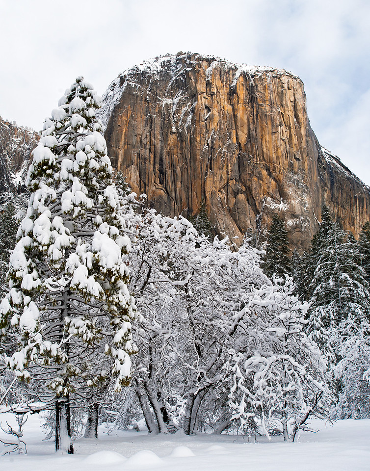 Winter on El Cap, Yosemite National Park, CA