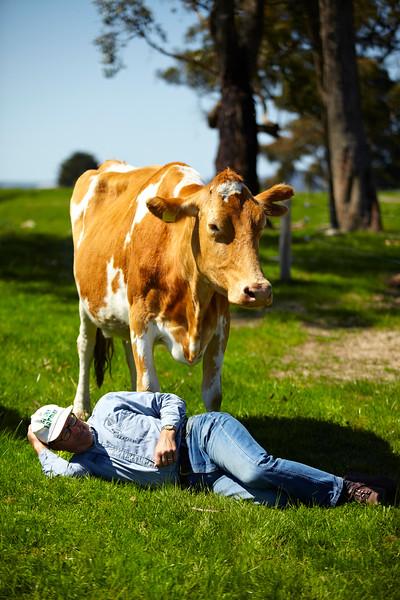 GW Joel Salatin  mobile dairy 77.jpg