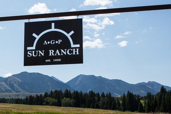 Sun Ranch-Summer 2015