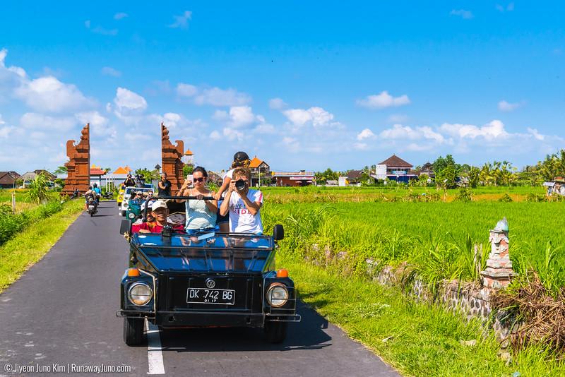 Bali-6103434.jpg
