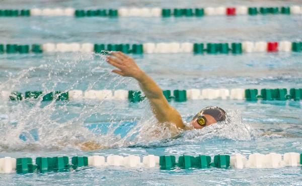 NLC Girls Swimming
