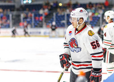 01-18-16 IceHogs vs Monsters