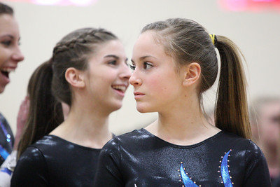High School Gymnastics 2012-13