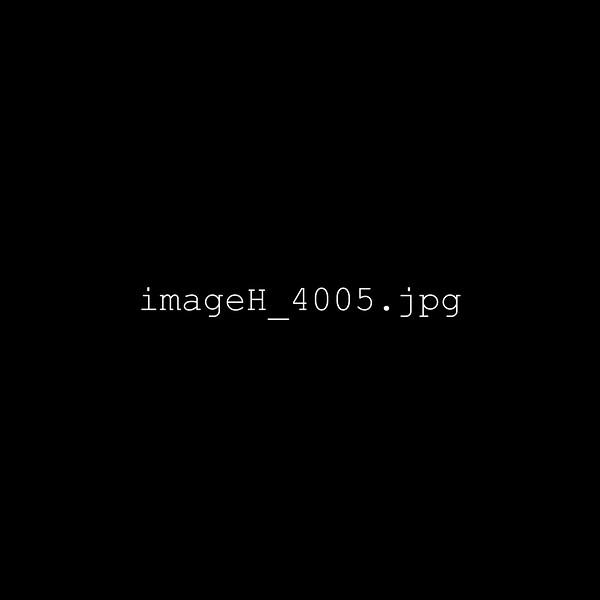 imageH_4005.jpg