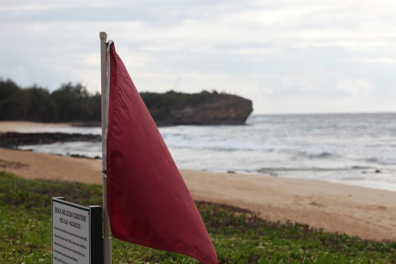 Kauai_D4_AM 059.jpg