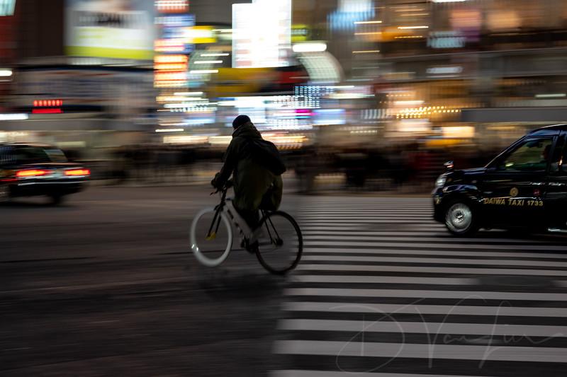 JapanPhotoTour20190205-16.jpg