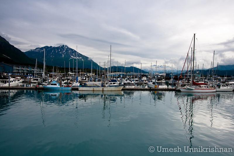 Kenai Fjords cruise 003.jpg
