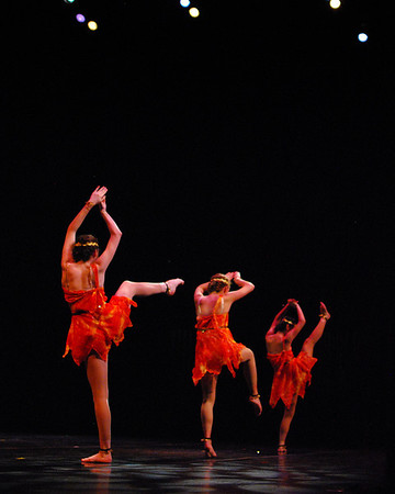 Columbus Dance Arts Academy - 2011