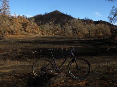 Aetna Springs/Bear Valley Loop, 12.15.2020