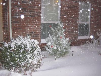 2009 Christmas Snow