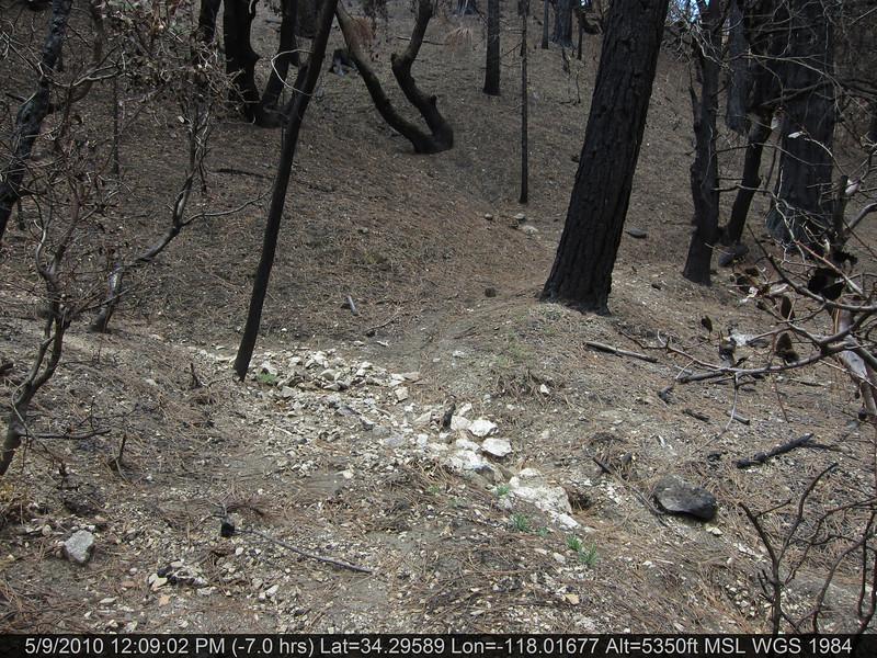 091-Vetter mtn Trail.JPG