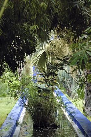 Marokko - Jardin Majorelle