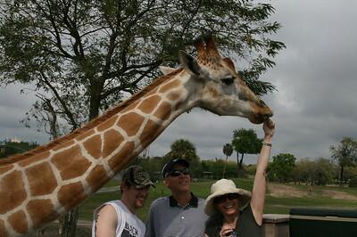 Busch Gardens Zoo