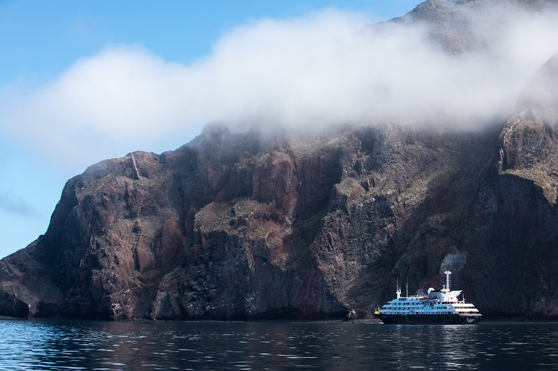 Silver Galapagos in the Mist