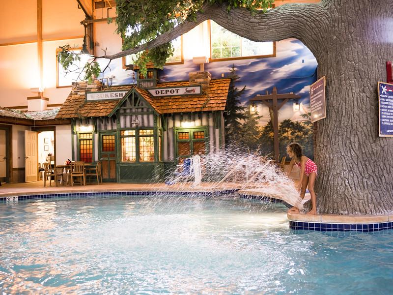 Country_Springs_Waterpark_Kennel-4447-2.jpg