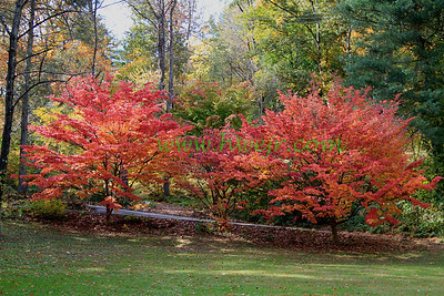 Pennsylvania - October, 2009